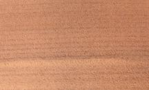 Satin-Nuss (Amberbaum)