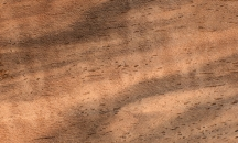 französischer Nussbaum