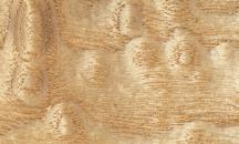 Tamo gemasert (japanische Eiche)